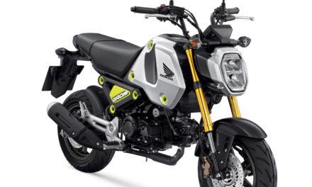 Honda MSX125 Grom 2021 : nouveau nom, nouveau moteur et nouveau look