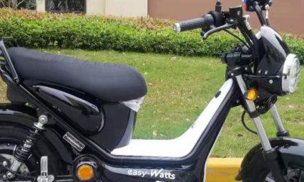Scooter électrique : Easy-Watts présente le e-bonsaï